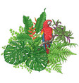 Tropical plants and sitting macaw