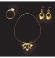 lady jewels gold set eps10 vector image