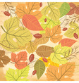 Autumn leaf pattern vector image