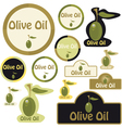 olive oil - label vector image vector image