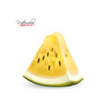 realistic yellow watermelon fruit 3d slice vector image vector image