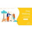 banner dog walking concept pet sitting vector image