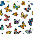 decorative butterflies pattern vector image vector image
