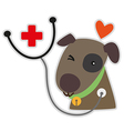 dog care vector image