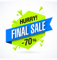 final sale poster banner vector image vector image
