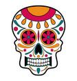 floral ornamente head skull day of the dead vector image vector image
