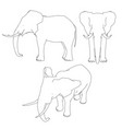 set with the outline of an elephant front side vector image