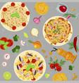 template of italian macaroni vector image vector image