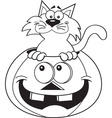 Cartoon cat inside a pumpkin vector image