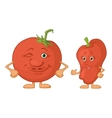 Character tomato and pepper vector image