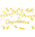 congratulations celebration background template vector image