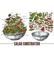 sketch elements for vegetables salat vector image vector image