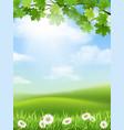 autumn landscape grass hill maple branch vector image