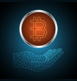 bitcoin with holding hand vector image