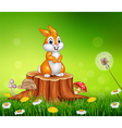 Cute bunny on tree stump grass background vector image
