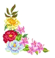 Decorative element with China flowers Bright buds vector image vector image