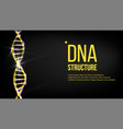 dna structure biotechnology concept vector image