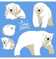 Polar Bears collection vector image