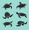 set turtle isolated on blue background vector image vector image