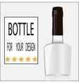 Bottle for your design vector image