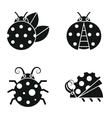 Black silhouette ladybugs on white background vector image vector image