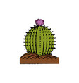 cactus desert plant vector image vector image