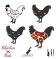 chicken cuts vector image vector image