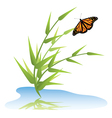 grass water and butterfly vector image vector image