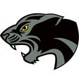 head jaguar vector image vector image