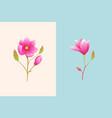 magnolia or rose brunch design boho style flower vector image