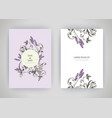 set of card with flower lavender leaves wedding vector image