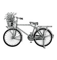 vintage bicycle and flower pot hand drawing clip vector image
