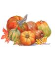 Artistic fruit design vector image vector image