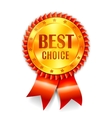 Best Choice Award vector image vector image