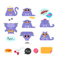 cat flat design icon set vector image