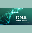 dna structure abstract helix genetic vector image