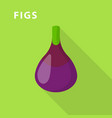 figs icon flat style vector image