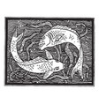 fish design is a natural form in under the water vector image vector image