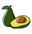 graphic of avocado vector image vector image