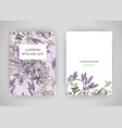 set of card with flower lavender leaves wedding vector image vector image