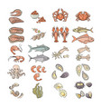 colorful seafood icon set vector image vector image