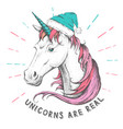 hand drawing hipster fantasy animal unicorn vector image vector image