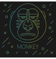 Monkey Lines Green vector image vector image