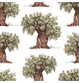 pattern of the drawn olive trees vector image vector image