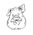 pig head sketch vector image