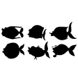 Silhouettes of the different sea creatures vector image vector image