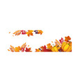 thanksgiving banner with pumpkins and colorful vector image vector image