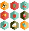 icon fruits vector image vector image