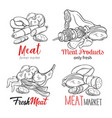 meat products vector image vector image