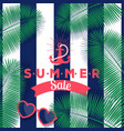 summer sale banner store vector image vector image